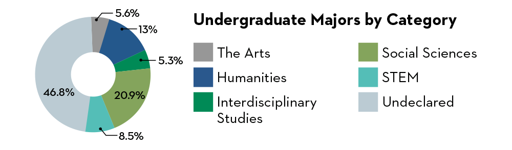 Undergraduate Majors by Category