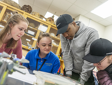 Image associated with Goucher College establishes $2 million endowed professorship in biological sciences and chemistry news item